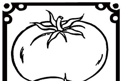 Martias Db21 Gambar Mewarnai Tomat