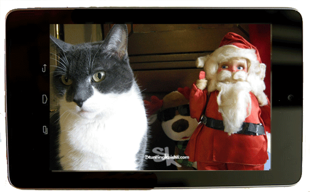 A Christmas Selfie with Santa