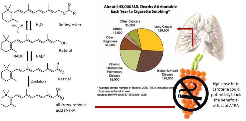 Beta carotene smokers study