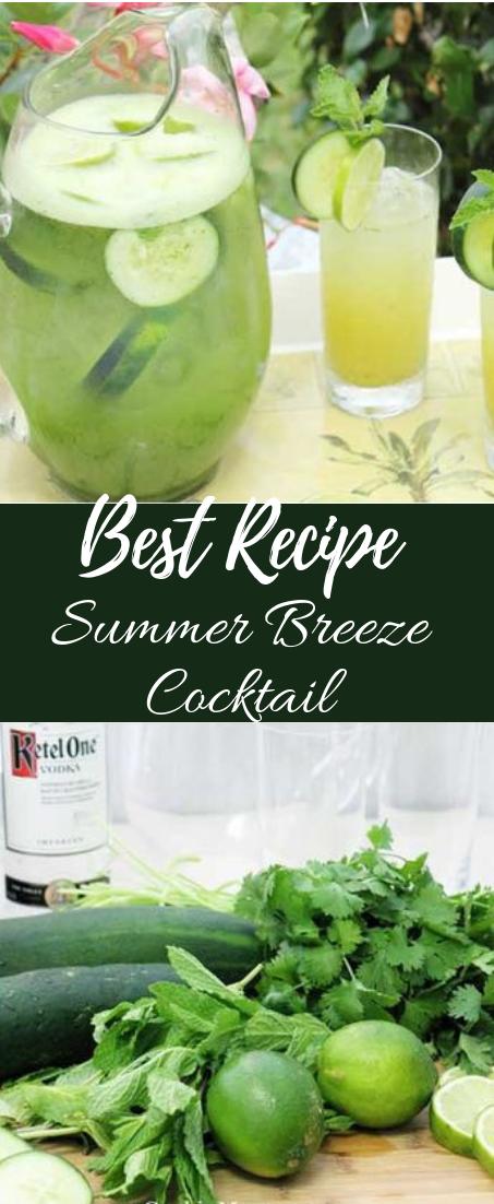 Summer Breeze Cocktail #healthydrink #easyrecipe