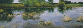 admirables-paisajes-pintados