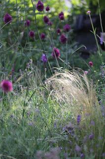 schöne Blumenbeete planen, gestalten und anlegen - Gartenplanung Renate Waas