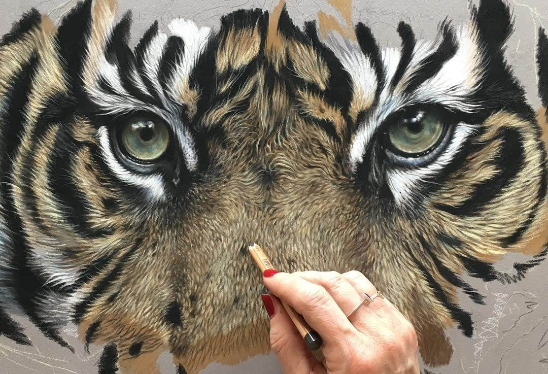06-Tiger-Eyes-Julie-Rhodes-Color-Pencil-Wild-Animal-Drawings-www-designstack-co