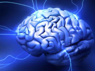Terapi Listrik Dapat Menghambat Koneksi pada Otak  Terapi Listrik Dapat Menghambat Koneksi pada Otak