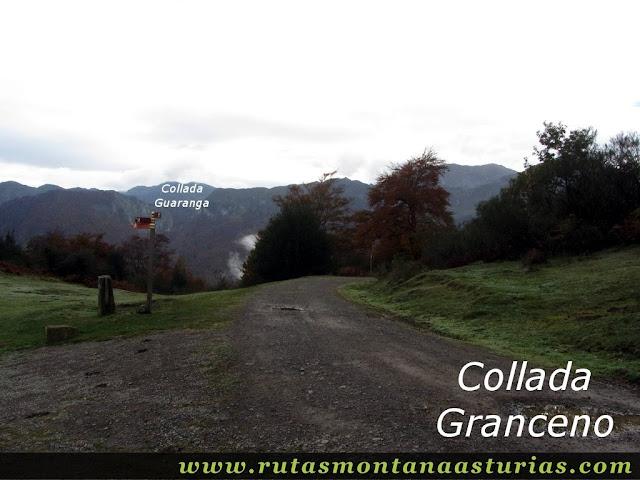 Ruta Bosque de Peloño: collada Granceno