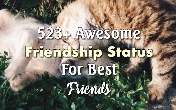 friendship status latest friends