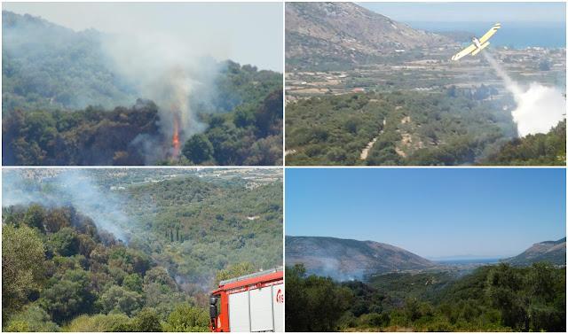 Υπό πλήρη έλεγχο η φωτιά στην Σκορπιώνα Θεσπρωτίας (ΦΩΤΟ+ΒΙΝΤΕΟ)