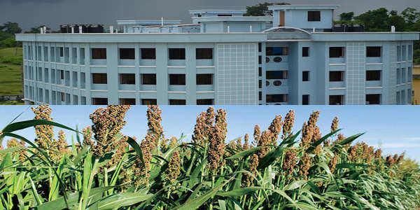 Sylhet Agricultural University Campus