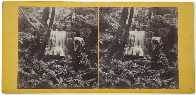 Samuel Clifford stereo of camera
