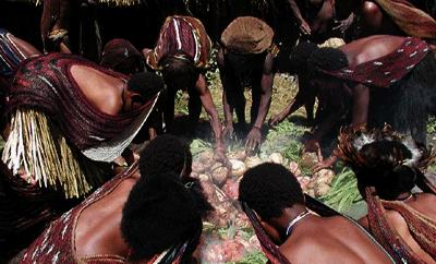 Bakar Batu Ritual Budaya Papua