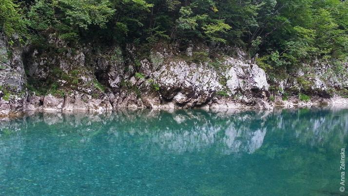 Бирюзовая вода в реке Тара, Черногория