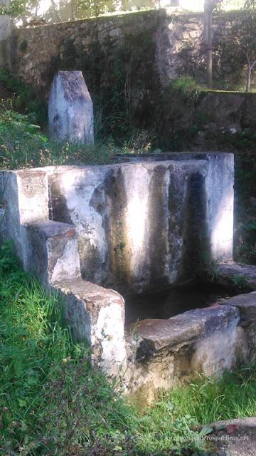 lavadero-carranza