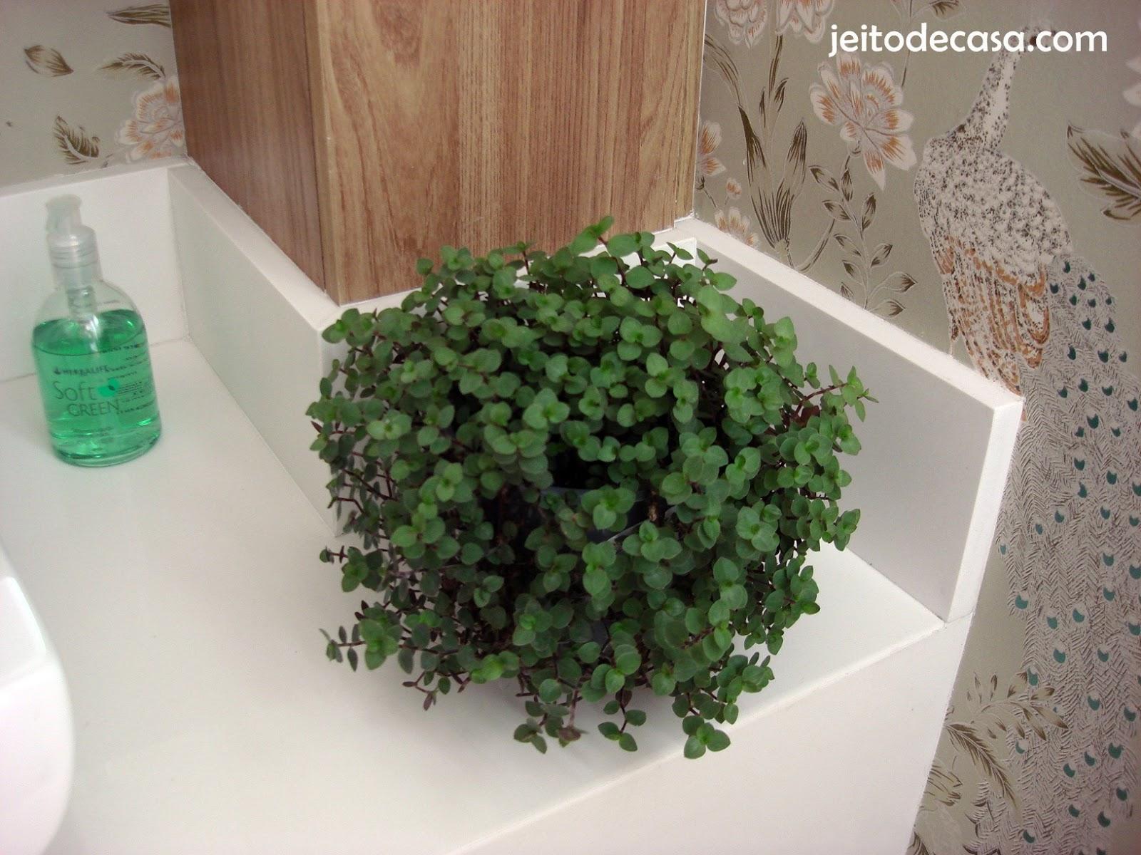 Plantas naturais no lavabo  Jeito de Casa  Blog de Decoração -> Banheiro Decorado Com Planta Artificial