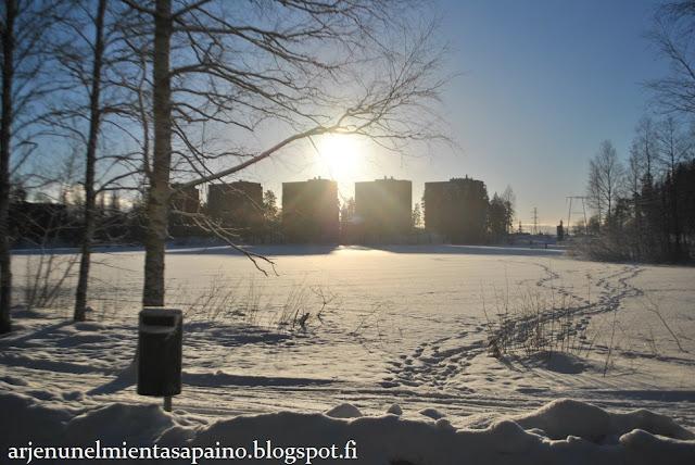 talviurheilu, hiihto, luistelu, ladut, jää, sukset,