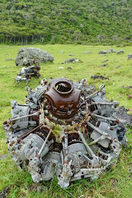 Flugzeugmotor Absturz Trümmer Tipps gegen Flugangst Lord Howe Island