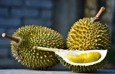 Belajar Cara Menanam Durian Sambil Berwisata