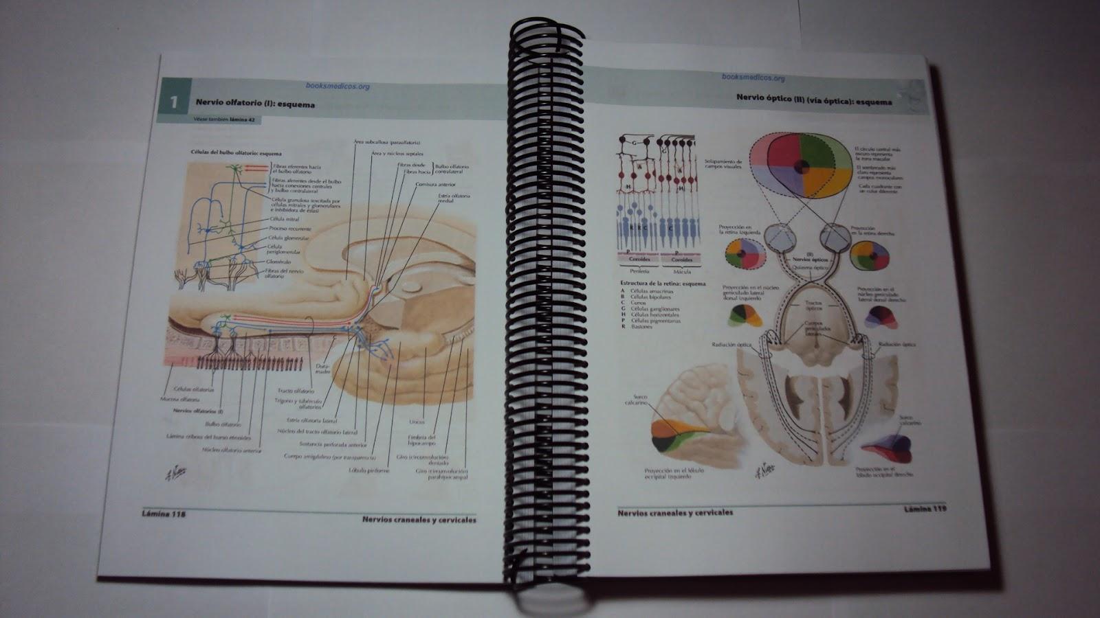 Libros a Color para FFyB: Listado de Precios y Link para bajar los PDF