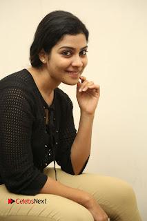 Actress Satna us Pictures at Bichchagadu Success Meet  0108