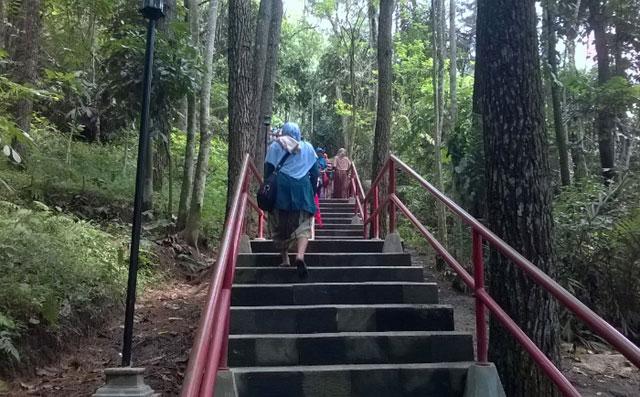 Bukit Gunung Tidar