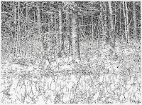 Richard Müller: dessin Winterzeichnung 5