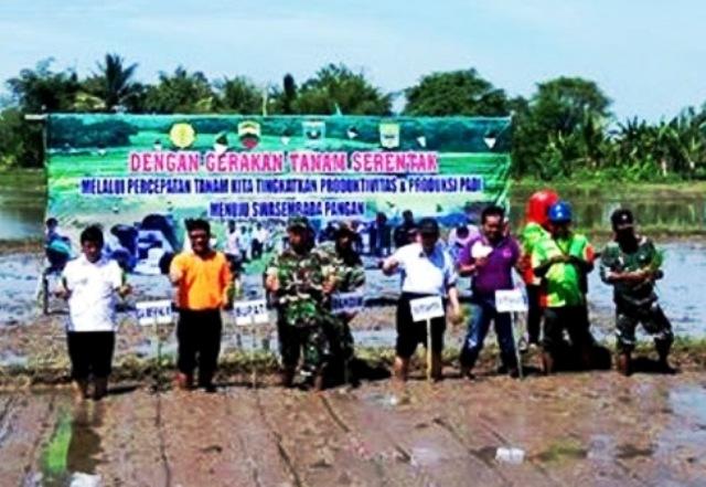 Nagari Pungguang Kasiak Siap Jadi Penyangga Utama Program Ketahanan Pangan Padangpariaman