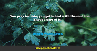 You pray for rain, you gotta deal with the mud too. That's a part of it.  -Denzel Washington