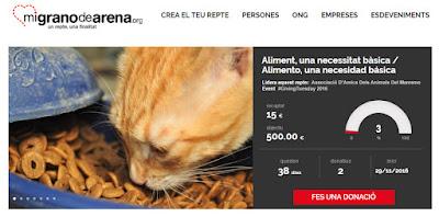 http://www.mgda.es/r/2/13638