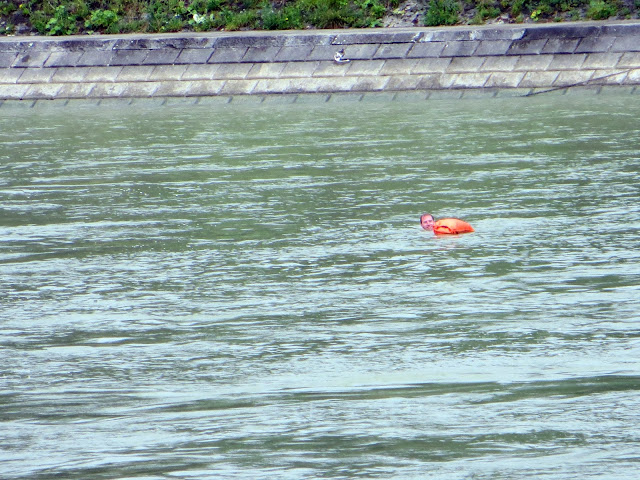 swimming in the rhein, basel, Switzerland, travel, travelling, traveling, Europe, long weekend, weekend break, city break, euro trip, rathaus, red rathaus, black forest, Rhine, munsterplatz, munster cathedral, guide to basel, what to do in basel,
