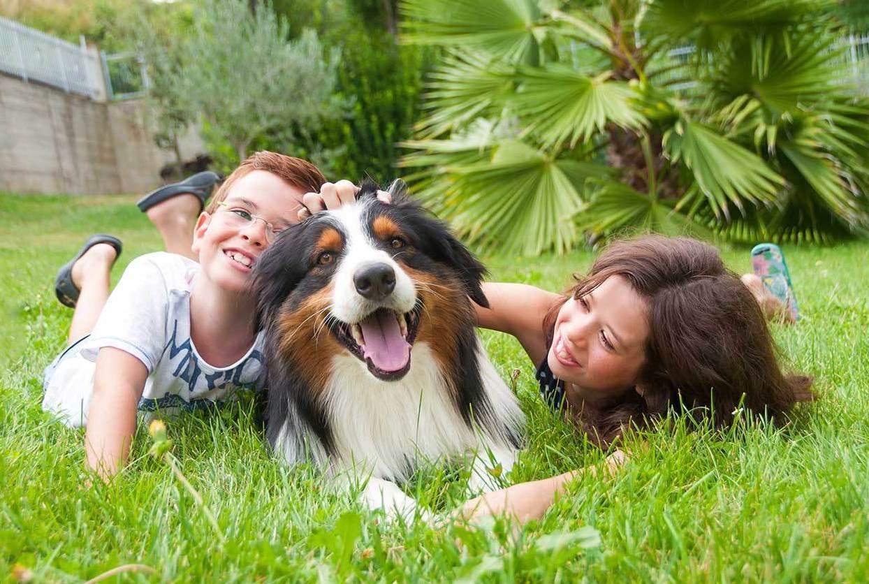 Ao se desenvolver ao lado de um cachorro, a criança terá benefícios que envolvem saúde, convívio social e equilíbrio das emoções !