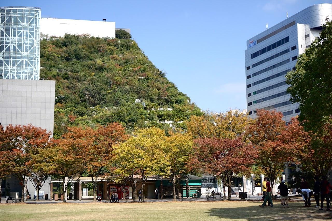 アクロス福岡(ACROS FUKUOKA)と天神中央公園(Tenjin Central Park)