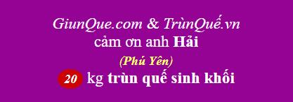 Trùn quế Phú Yên