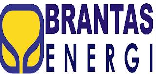 Informasi Lowongan Kerja BUMN Terbaru PT Brantas Energi Tahun 2016