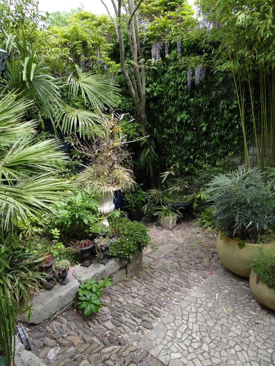 Jardin de b signoles rayon de soleil du jour for Jardin soleil