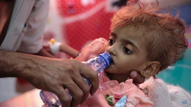 Terungkap! Australia Pasok Senjata Militer ke Negara yang Terlibat Dalam Perang Yaman