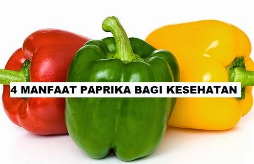 15 Manfaat dan Khasiat Paprika Hijau untuk Kesehatan