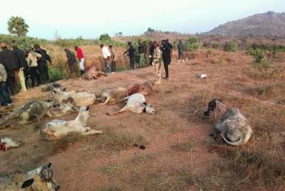 irigwe militants kill fulani herdsmen