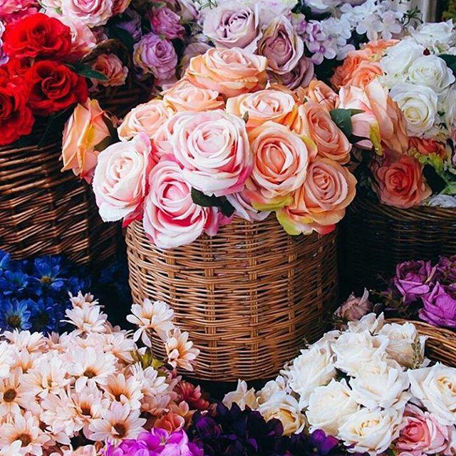 كُن مُزهِراً غابَ الزهرُ بينَ 10946336_16475052521