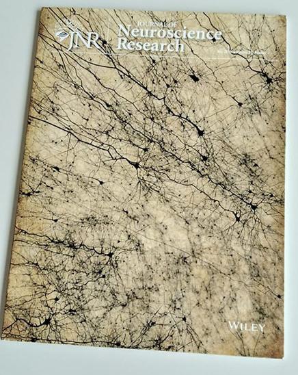 Journal Of Neuroscience Cover Art