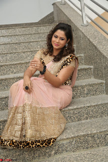 Shilpa Chakravarthy in Lovely Designer Pink Saree with Cat Print Pallu 056.JPG
