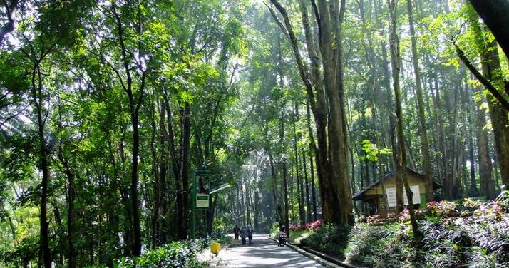 sudah menjadi isu terkini kalangan anak muda pecinta alam  Liburan Di Bandung Ala Backpacker