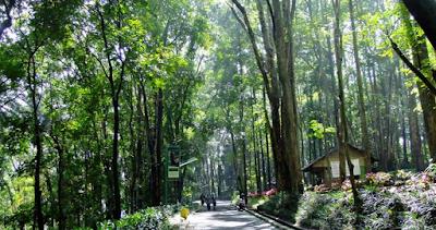 Liburan Di Bandung Ala Backpacker
