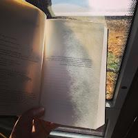 Reseña el fin de los tiempos de Susan Ee. Zaybet