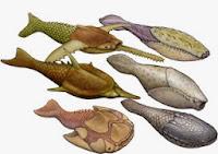 Resultado de imagen de ordovicico peces
