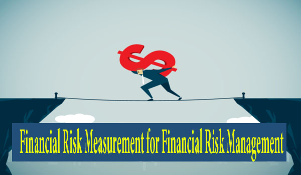 Financial Risk Measurement for Financial Risk Management