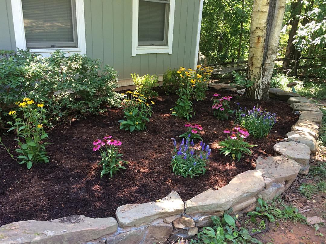 how to start a medicinal herb garden homesteaders of america