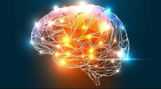 El hombre vivió sin el 90% del cerebro