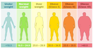 BMI, IMT, Body Mass Index, Index Masa Tubuh