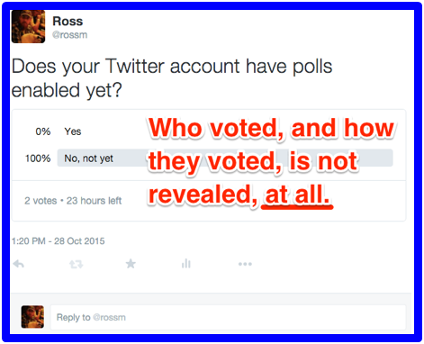 How to Make a Poll on Twitter
