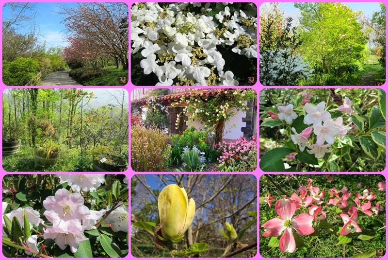 Jardín Botánico Iturraran en primavera