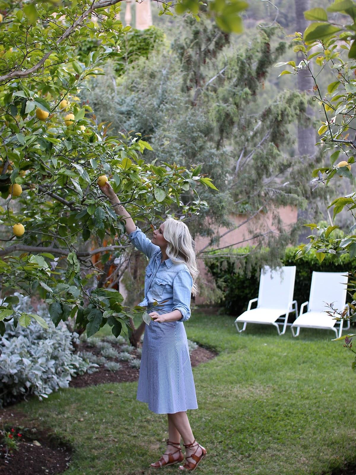 picking lemons farm outfit